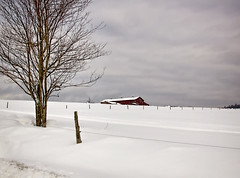 Farm on the hill (madre11) Tags: morning winter snow landscape farm newengland newhampshire landaff