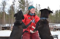 Alta-Norvegia-Finnmark-escursione-sleddog-husky16 (Familygo) Tags: norway bambini alta norvegia artico finnmark lapponia familytravel viaggiconbambini