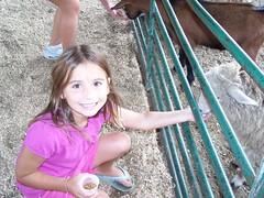 summer 2009 326 (paganofamily5) Tags: summer2009