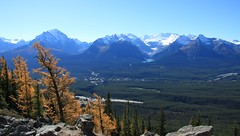 Lake Louise (dbonny) Tags: snow canada fall rockies fallcolors alberta banff rockymountains lakelouise larch albertacanada banffnationalpark canadianrockies mountvictoria banffnp mounttemple fairviewmountain popespeak mountwhyte mountniblock mountaberdeen mounthungabee