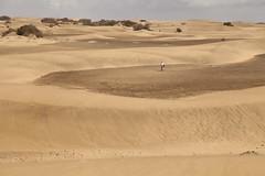 Sol, viento y calor en las dunas de Maspalomas, isla de Gran Canaria, Espaa. (www.rojoverdeyazul.es) Tags: islascanarias espaa autor lvaro bueno dunasdemaspalomas dunasarena sand dunes playademaspalomas isla degrancanaria