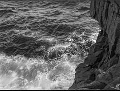 looking down, ocean, surf, Gull Rock,  Monhegan, Maine, Mamiya 645 Pro, mamiya sekor 80mm f-2.8, early June, 2016 (steve aimone) Tags: lookingdown ocean surf cliff gullrock maine monhegan monheganisland monochrome monochromatic mediumformat mamiyasekkor80mmf28 mamiya645pro 120 film fomapan200 ilfordilfosol3developer atlanticocean