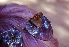 Foz do Iguaçu - 07/2016 (Elisama Oliveira) Tags: nature beautifulplace parana brazil brazilbeauty natureporn butterfly me colorfulhair colors naturetouch