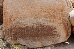 Joshua Tree National Park, Petroglyphs (darthjenni) Tags: pictograph petroglyph rockart native american indian rock stone coloradodesert mojavedesert transitionzone twentyninepalms california unitedstates us