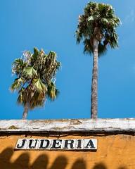 Mirando arriba desde la Judera / Looking up from the Jewish Quarter (sevillaphotowalks) Tags: sevilla seville travel photography urban photowalks espaa spain andaluca andalusia