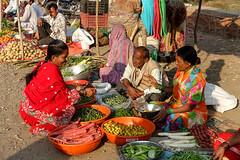 Near Aurangabad, January 2016 (EvanGilder) Tags: travel india nasik nashik hinduism