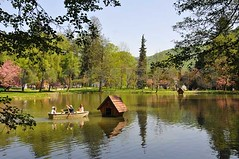 Beregvar - Beregovo -Schonborn-kastely parkja03