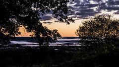 Soir de brume (2) (Tra Te E Me (TTEM)) Tags: lumixfz1000 hdr cameraraw heurebleue brume valle ville nuages ciel crpuscule arbres vallon jura franchecomt
