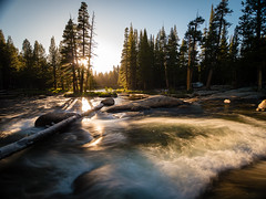 Yosemite NP (Frank Wittig) Tags: yosemitenationalpark tuolumnemeadows nature water river trees sunset usa travel sunrays