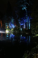 2016 - 14.10.16 Enchanted Forest - Pitlochry (218) (marie137) Tags: enchanted forest pitlochry mobrie137 scotland lights music people water reflection trees shows food fire drink pit patter shapes art abstract night sky tour family walk path bells smoke disco balls unusual whisperer bridge wood colour fun sculpture day amazing spectacular must see landscape faskally shimmer town