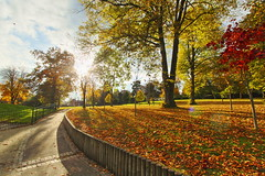 Wallace Park, Lisburn, autumn (Pingmore) Tags: wallace park lisburn autumn landscape ultrawide sun trees leaves colours belfast hdr