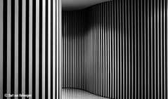 Undulation (Bart van Hofwegen) Tags: wall wave waves undulate undulation walls architecture abstract curves curvy lines museum hall hallway contrast blackandwhite monochrome undulating stripes carmenthyssen museocarmenthyssen carmenthyssenmuseum carmenthyssenmlaga mlaga carmenthyssenmalaga malaga