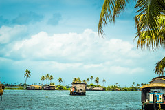 Dream world filled with Houseboats! (yugantarora) Tags: landscape nikon photo india moment green landscapes kerala backwaters world photography yoga spa dreamland dreamworld incredible alleppey ayurveda kochi ambience houseboats palmtrees southindia nikonist incredibleindia travelindia traveldiaries indiainmylens travelclicks flickr flickrlandscape lovesymbol loveindia lovekerala keralatrip keralapeace keraladiaries keralashot indiaimages indiapictures indiaheritage indiatrip indian indiantea southhills southasia southindiatrip south