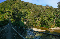 Kaitoke Regional Park (Jose David) Tags: forest kaitoke lordoftherings newzealand outdoors wellington