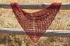 _DSC5975 (KateSi) Tags: tejer tejido tricot tricoter tricotage knitting knit strikke strikking lace semiprecious knitty sjal shawl châle chal blonde encaje red rojo rouge rød