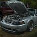 Ford Mustang SVT Cobra Convertible (2016 WNC Super Show, Dillsboro, NC)