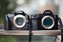 Panny & Sony (Nagy Barna) Tags: camera cameraporn compactsystemcamera mirrorless milc microfourthirds sonya7s sony panasonicg3 panasonic m43 emount comparison sizes sensor cool old sexy little