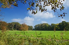 It's Autumn....... (The world in f stops) Tags: leaves colours trees autumn outdoor nature landscape serene clouds grass field plant sky green blue foliage braches twigs