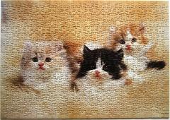 Three Kittens (Leonisha) Tags: puzzle jigsawpuzzle kittens ktzchen cat katze