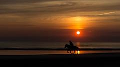 Reiter im Sonnenuntergang (Leif Hinrichsen) Tags: sunset summer beach strand denmark island sonnenuntergang sommer insel northsea dänemark danmark nordsee abendhimmel sandstrand rømø röm nordseeinsel