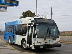 York Region Transit 1061 (YT | transport photography) Tags: york bus eldorado ii transit ez rider region brt yrt