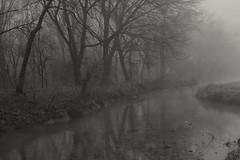 scorci invernali (mat56.) Tags: trees winter white black water monochrome misty fog alberi reflections monocromo landscapes antonio nebbia acqua inverno riflessi paesaggi bianco lombardia nero canale cremona pianura scorci padana invernali mat56 romei dovera roncadello