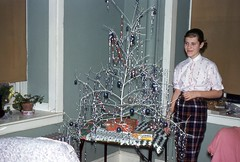 Girl with a Twig Christmas Tree, 1958 (Alan Mays) Tags: christmas xmas old blue trees decorations girls white portraits vintage silver children grey clothing holidays shiny interiors rooms photos gray ephemera clothes photographs ornaments 1950s 1958 kodachrome christmastrees plaid slides sparkly twigs transparencies foundphotos december25 redborder twigtrees vptp twigchristmastrees