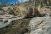 (Laura Minsk) Tags: arizona water rock tucson saguaro saguaronationalpark 2015 nikon1755mmf28 nikond7100