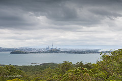 View while walking around the Rangitoto crater rim, looking towards Auckland  D61_5938.jpg (Mobile Lynn) Tags: newzealand water landscape cityscape overcast auckland rangitotoisland landscapephotography outdoorphotography