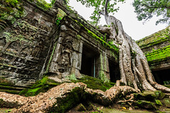 Ta Prohm (Hekay) Tags: temple cambodia angkorwat jungle area taprohm 2014