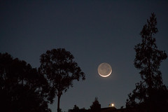 Moon came back (Arley L.) Tags: trees sky moon evening twilight crescent eveningcrescent