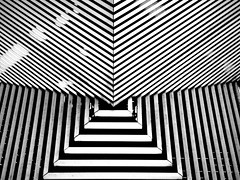 Cosmo.Crow.Cloth (Sil_52 (SilViolence)) Tags: barcelona urban bw abstract lines museum architecture blackwhite spain construction nikon museu minimal espana coolpix urbano catalunya abstraction museo abstracto astratto abstrato architettura barcellona biancoenero spagna abstrakt cosmocaixa particolare catalogna abstrait abstrata linee abstrakte struttura p7000 astrattismo minimale absztrakt architetturamoderna abstrakti coolpixp7000 nikoncoolpixp7000 apstraktna