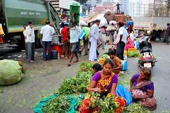 Dadar Flower Market / 21 (mariannaF) Tags: city travel flowers india flower asia market culture streetphotography documentary explore bombay mumbai flowermarket wholesale reportage dadar southasia travelphotography