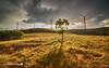Cullerin Range Windfarm (Struan Timms Photography) Tags: sunset range windfarm struan summerstorm cullerin tokina1116mm28 nikond7000 struantimmsphotography juneephotographer