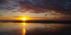 Ninety Mile Beach 5 (Markj9035) Tags: ocean sunset sea reflection beach reflections waves northland 90milebeach ninetymilebeach northlands