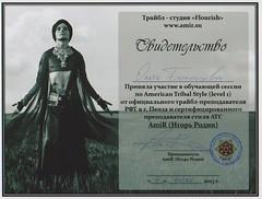 Дипломы Ольги Бочкаревой (20)