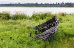 Forgotten boat - Elena Romantseva (caijsa's postcards) Tags: nature boats lakes postcards transports sum
