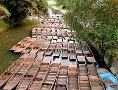 Punts tied up on the Isis, Oxford (liz_gilbert) Tags: oxford isis punts