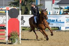 DSC08726_s (AndiP66) Tags: springen pferdesporttage dagmersellen luzern 2016 juli july 19juli2016 pferd horse schweiz switzerland kantonluzern cantonoflucerne concours wettbewerb horsejumping springreiten pferdespringen equestrian sports pferdesport sport martinameyer grueb wolhusen sony sonyalpha 77markii 77ii 77m2 a77ii alpha ilca77m2 slta77ii sony70400mm f456 sony70400mmf456gssmii sal70400g2 andreaspeters ch