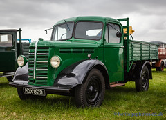 IMG_2691_West Oxon Steam & Vintage Show 2016 (GRAHAM CHRIMES) Tags: westoxonsteamvintageshow2016 westoxonrally2016 westoxonrally vintageshow westoxon rally steamrally steamfair showground steamengine show steamenginerally steam traction transport tractionengine tractionenginerally heritage historic vintage vehicle vehicles classic photography photos preservation wwwheritagephotoscouk oxfordshire witney westoxonsteam bedford ktype dropside lorry 1948 hox829