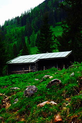 cabin in the woods (sebastianhillemann) Tags: cabin htte house wood wald germany deutschland knigssee landscape landschaft fuji xt1 nature mountain berg