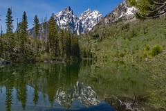 String Lake Reflection (Plain Adventure) Tags: mountains wyoming grandtetonnationalpark