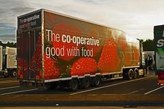 H1817 trailer (Barrytaxi) Tags: strawberry transport coop eddie trailer daf stobart eddiestobart
