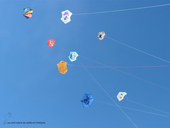2016-07-17 _Penvins_P2000660 copie (les cerfs-volants de Laetitia et Christophe) Tags: animaux beauducel bridage cerfvolant cerfsvolants cerfvolants christophe construction couture fabrication gonflable grigny kaf kangaroo kenny kite ktk laetitia monofil rhone zoo penvins 2016 journée du vent juillet bilboquet beauduciel