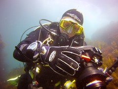 18 July 2016 - Scillies Trip PICT0209 (severnsidesubaqua) Tags: scillies scilly scuba diving