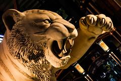 Detroit Tigers (Thomas Hawk) Tags: detroit detroittigers michigan tigers usa unitedstates unitedstatesofamerica baseball stadium