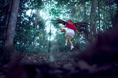 Remilia Scarlet - Little Red Riding Hood (bdrc) Tags: asdgraphy remilia scarlet touhou project buri cosplay girl portrait back forest jungle dark mood little red riding hood vampire loli sony a6000 sigma 30mm f28 prime tawau outdoor park light rays manipulation jump floating nature shadow