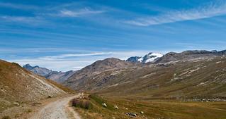 Panorama dal piano del Nivolet, Gran Paradiso