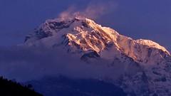 Trekking Nepal (Rolfmundi) Tags: annapurna nepal landruk