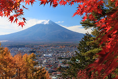 Framed Mt Fuji 7278 (kbaranowski) Tags: 2016krzysztofbaranowski krzysztofbaranowski nihon nippon autumn maple japanesemaple fallfoliage colorful nature beautyinnature mtfuji